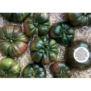Tomate montañés de la Galia (ecológicos )